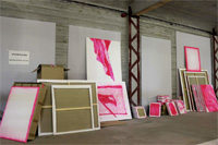 the pink archive | installation view | Kühlhaus – Berlin | 2014